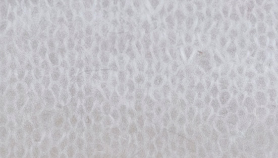 PRESTIGE     nm 21            OPTICAL WHITE